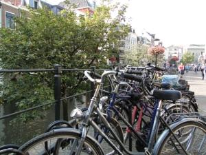 Fahrräder haben hier absoluten Vorrang. Soweit ich gesehen habe, war es das Hauptfortbewegungsmittel der EinwohnerInnen von Utrecht.